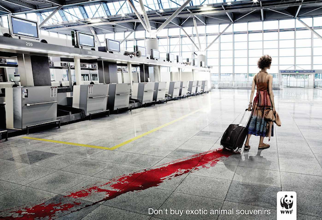 Shockvertising WWF